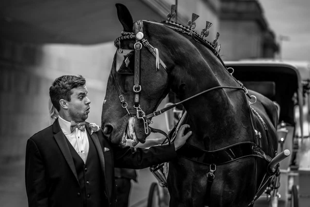 Wedding Photographers in Madison WI Groom Horse
