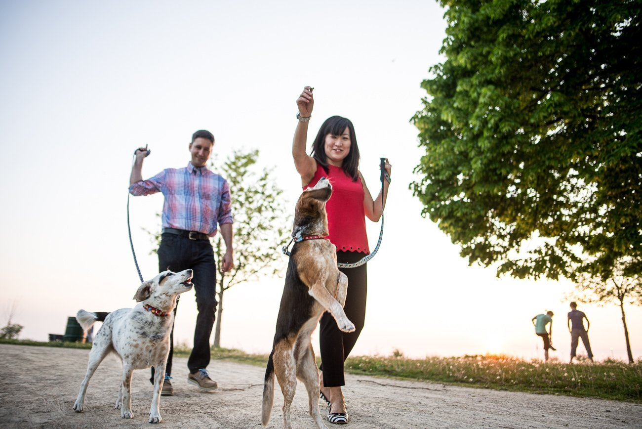 Engagement Photos Madison WI Dogs Couple