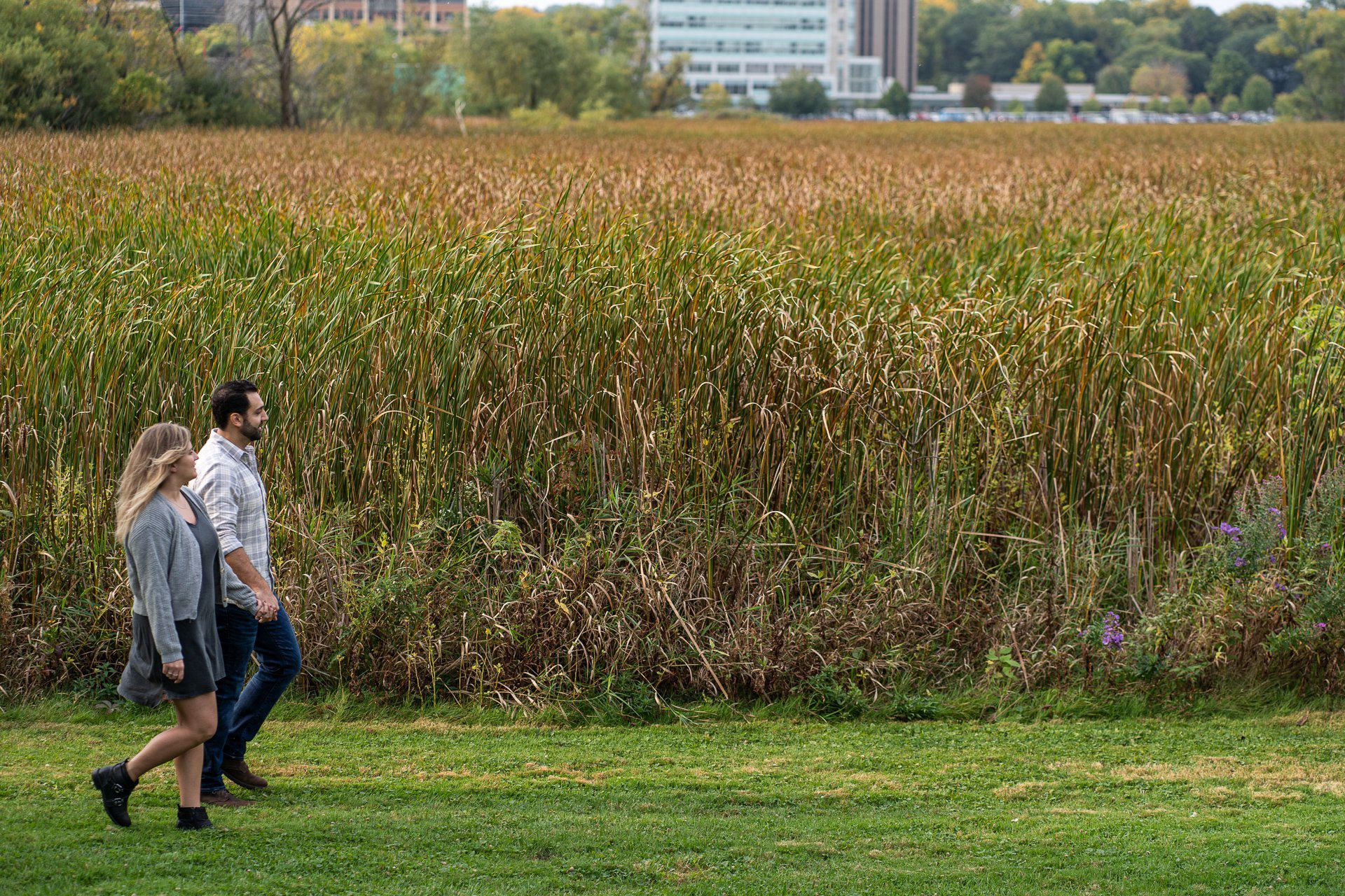 couple walking together with tall grass on background