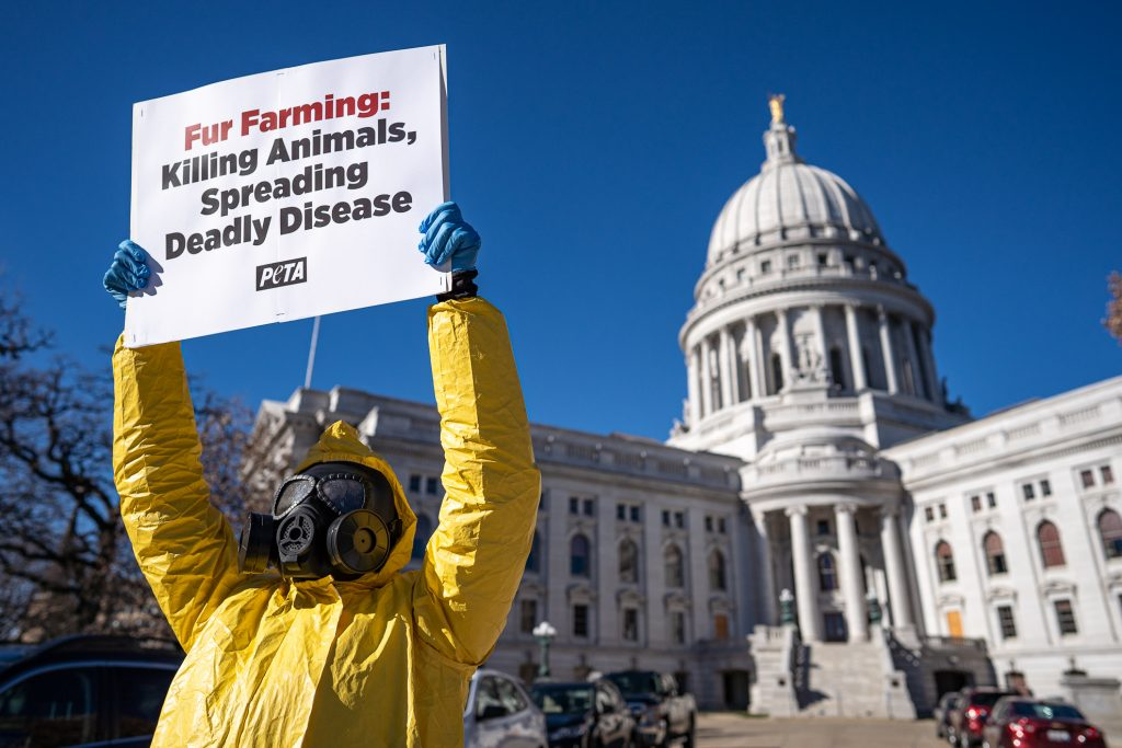 Event Photographers Madison WI Protest PETA