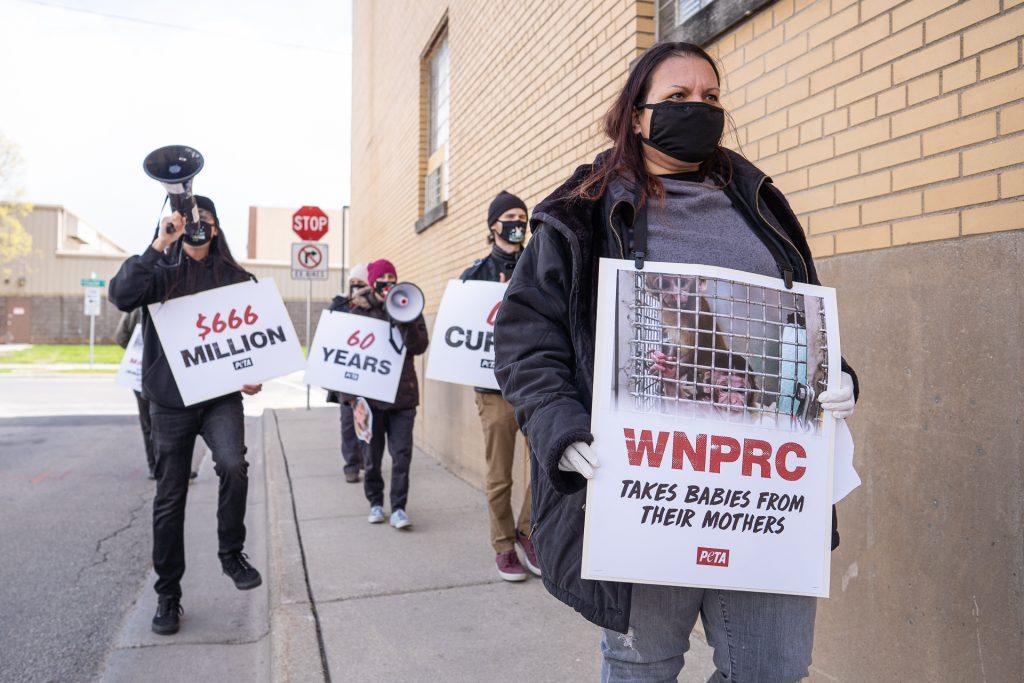 PETA Protest Primate Abuse Photography