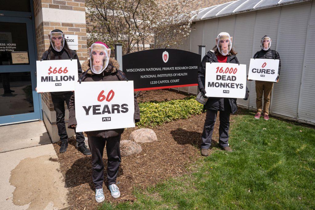 PETA Protest Primate Abuse Research