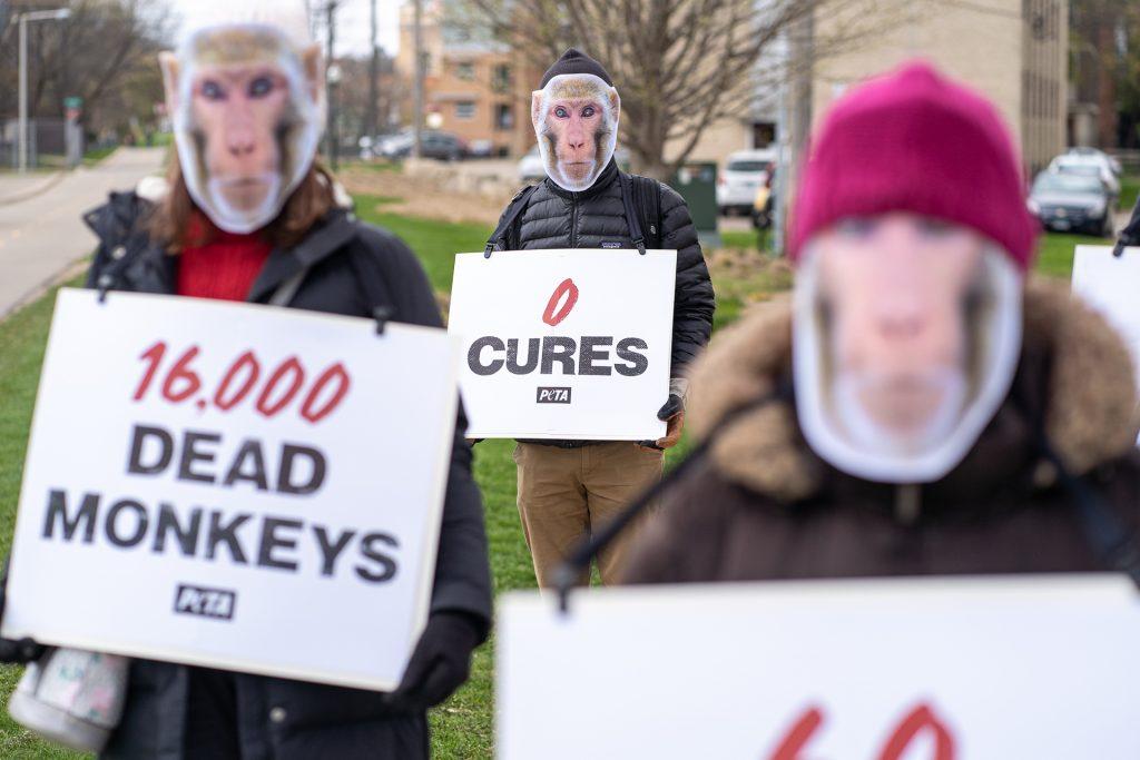 PETA Protest UW Madison No Cure
