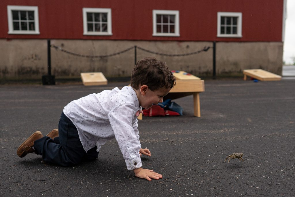 boy crawling after frog